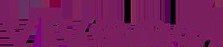 logo_vivendi